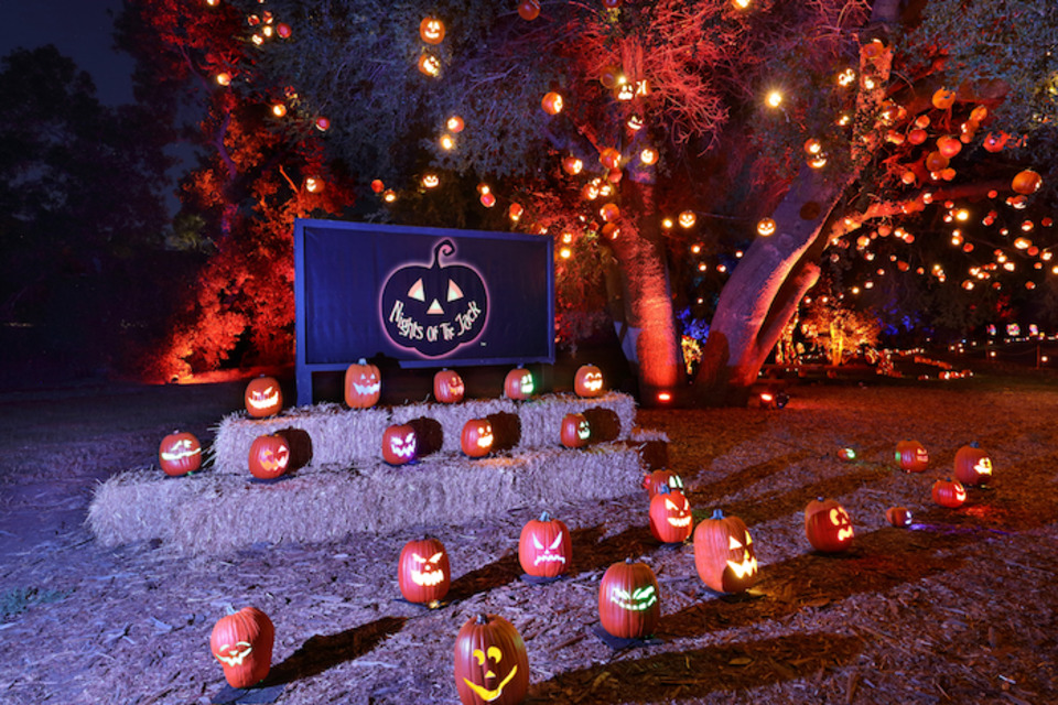 Why This New Pumpkin Festival Is Getting a Ton of Social-Media Buzz